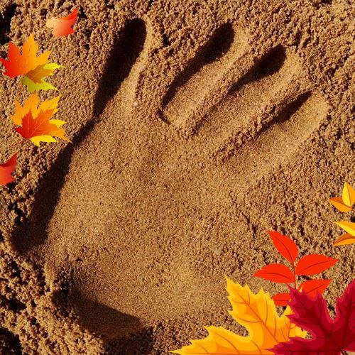 Písek pro pískoviště i stavbu